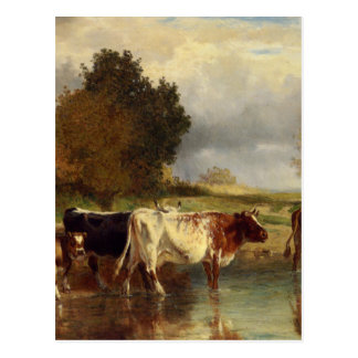 Vacas del becerro en la marga por Troyon constante Tarjeta Postal