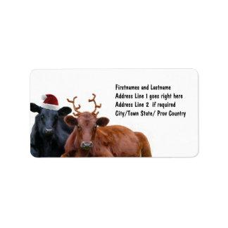 Vacas del día de fiesta del navidad en el gorra y  etiqueta de dirección