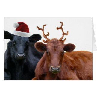 Vacas del día de fiesta del navidad en el gorra y  tarjeta de felicitación