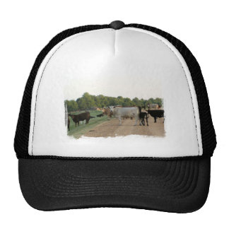 Vacas del dique de Mississippi Gorros Bordados