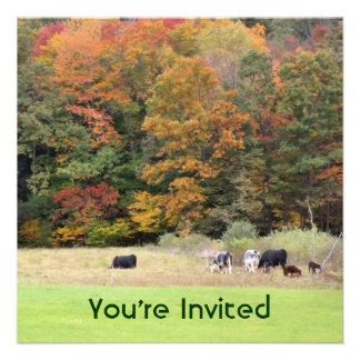 Vacas del follaje de otoño en la invitación de la
