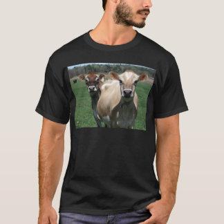 Vacas del jersey