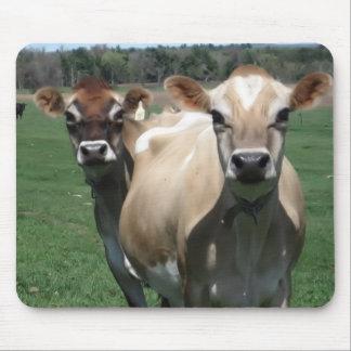 Vacas del jersey tapetes de raton