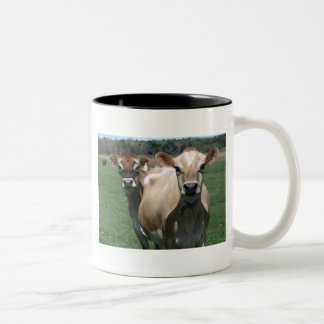 Vacas del jersey taza de dos tonos