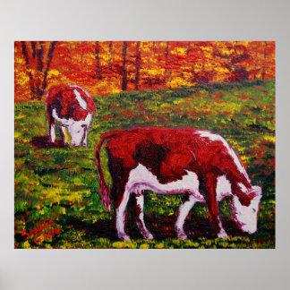 Vacas del otoño de Nueva Inglaterra Impresiones