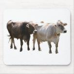 Vacas del suizo de Brown Tapetes De Ratones