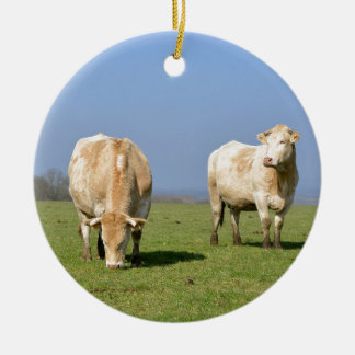 Vacas en campo adorno redondo de cerámica