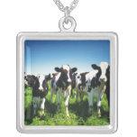 Vacas en el campo, ciudad de Betsukai, Hokkaido Colgante Cuadrado