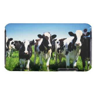 Vacas en el campo, ciudad de Betsukai, Hokkaido iPod Case-Mate Cárcasa