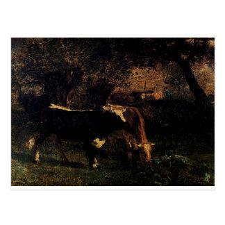 Vacas en el riego por Troyon constante Postales