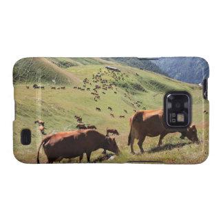 vacas en el valle de Tarentaise - raza de Tarine Galaxy S2 Fundas
