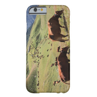 vacas en el valle de Tarentaise - raza de Tarine Funda Barely There iPhone 6