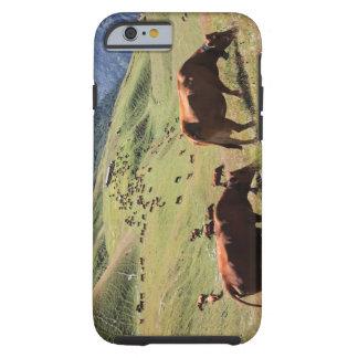 vacas en el valle de Tarentaise - raza de Tarine Funda Resistente iPhone 6