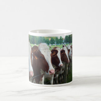 Vacas en fila tazas