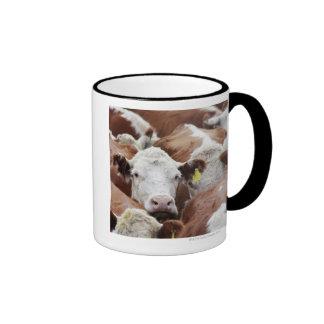 Vacas en un corral taza