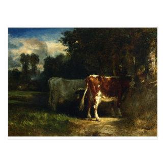 Vacas en un paisaje por Troyon constante Tarjeta Postal