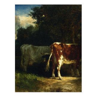 Vacas en un paisaje por Troyon constante Tarjetas Postales