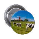 Vacas en un prado con el faro