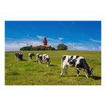 Vacas en un prado con el faro arte fotografico