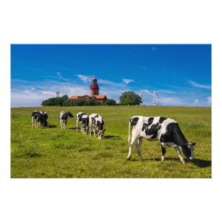 Vacas en un prado con el faro fotografía