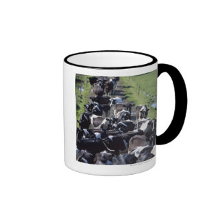 Vacas lecheras de Fresian, aguardando el ordeño, Taza De Dos Colores
