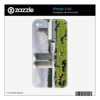 Vacas lecheras y granja cerca del condado de Taylo Calcomanía Para El iPhone 4