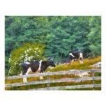 Vacas - MOO Membrete A Diseño