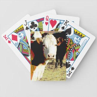 vacas originales del arte de la foto de los naipes barajas de cartas