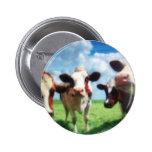 vacas pin