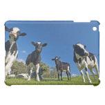 Vacas que alimentan en pasto