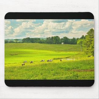 Vacas que pastan en hierba en campo de granja del tapete de raton