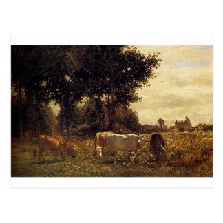 Vacas que pastan por Troyon constante Tarjetas Postales