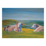 Vacas que se acuestan y pintura del valle del pais posters