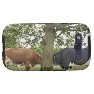 Vacas que se colocan cara a cara detrás de árbol galaxy s3 fundas