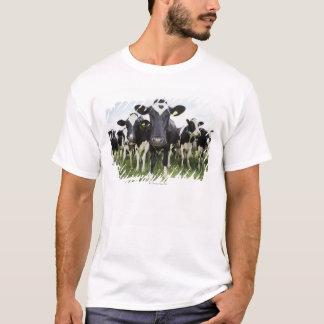 Vacas que se colocan en una fila que mira la playera