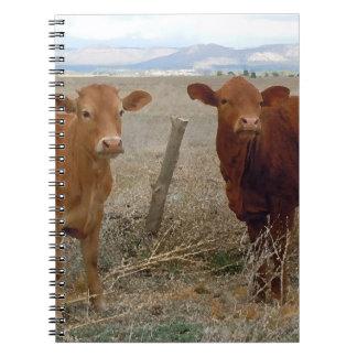 Vacas rojas lindas libros de apuntes con espiral