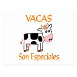Vacas Son Especiales Postcards