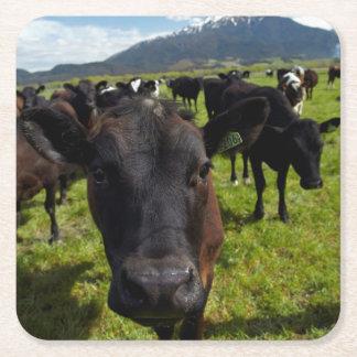 Vacas y Mt Somers Posavasos Personalizable Cuadrado