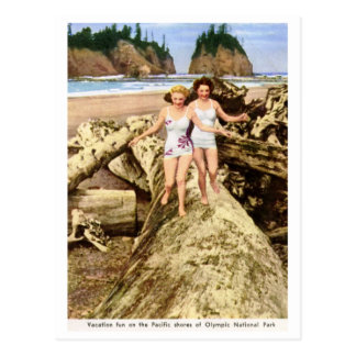 Vacation Fun, Olympic National Park, Vintage Postcard