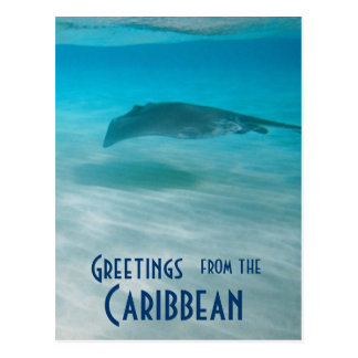 Vacation Greetings from Caribbean Postcard