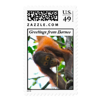 Vacation Greetings Postage