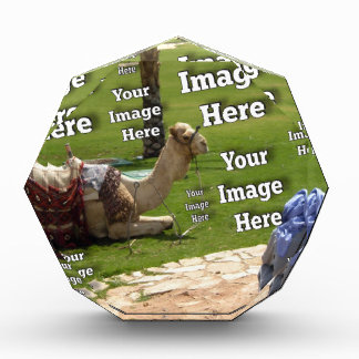 Vacation Image Desk Paperweight Template Award