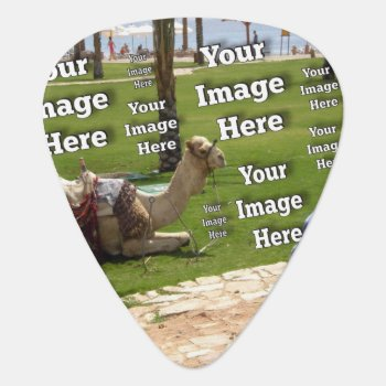 Vacation Image Template Guitar Pick by Zazzimsical at Zazzle