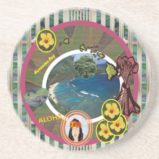 Vacation in the Tropics ~ Coasters