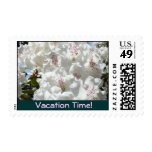 Vacation Time! stamps Pink White Rhodie Flowers