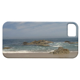 Vacation View iPhone SE/5/5s Case