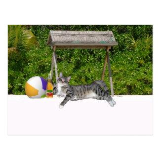 Vacationing Kitty Postcard