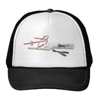 VacationNotesInBottle041412.png Mesh Hat