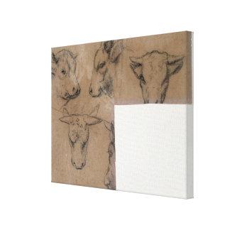 Vache de Cinq Croquis de tete de (lápiz en el pape Impresión En Lienzo
