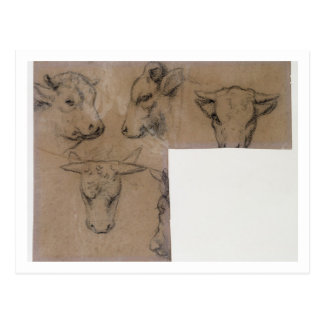 Vache de Cinq Croquis de tete de (lápiz en el pape Tarjetas Postales